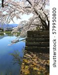 aizuwakamatsu castle and cherry ... | Shutterstock . vector #579950800