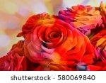 arrangement of red blooming... | Shutterstock . vector #580069840