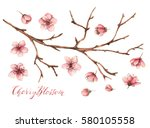 cherry blossom watercolor... | Shutterstock . vector #580105558