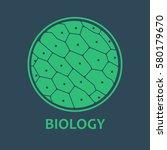 Chlorophyll. Plant Cells Under...