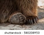 eurasian brown bear  ursus... | Shutterstock . vector #580208953