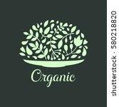 organic nature hand written... | Shutterstock .eps vector #580218820