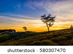 landscape the tree with the... | Shutterstock . vector #580307470