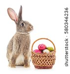Stock photo easter basket and bunny on a white background 580346236