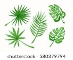 collection set of leaves ... | Shutterstock . vector #580379794