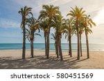 Palm Trees On Sandy Beach With...