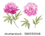 Set Of Watercolor Pink Peonies...