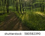 peaceful path going through... | Shutterstock . vector #580582390