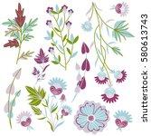 pattern nature. delicate... | Shutterstock .eps vector #580613743