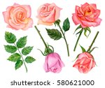 watercolor set of roses  hand... | Shutterstock . vector #580621000