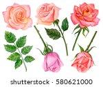 watercolor set of roses  hand... | Shutterstock . vector #580621000