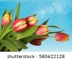 Tulips On Blue Background....