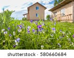 Wildflowers And Farmhouse In...