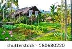 house in nature  baan rai i... | Shutterstock . vector #580680220