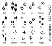 Stock vector wildlife animals reptiles and birds footprint animal paw prints vector set footprints of variety 580741024