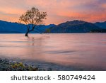 That Wanaka Tree In Sunset