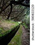 Small photo of Vertical photo of Levada. Madeiran system of mini-canals, irrigation system to distribute water from mounatins to drier regions.Hiking path along levada. Old trees forming a tunnel. Madeira.