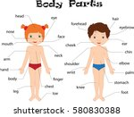 boy and girl unclothed. body... | Shutterstock .eps vector #580830388