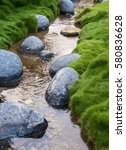 rocks in the creek surrounded... | Shutterstock . vector #580836628