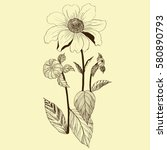 vector. dahlias   branch with... | Shutterstock .eps vector #580890793