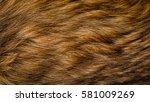macro shot of dog fur revealing ... | Shutterstock . vector #581009269