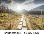sunset in the woods corridor | Shutterstock . vector #581027539