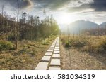 sunset in the woods corridor | Shutterstock . vector #581034319