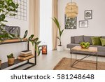 room interior with plants and... | Shutterstock . vector #581248648