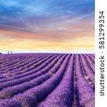 lavender field summer sunset... | Shutterstock . vector #581299354