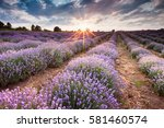 sunbeams in the lavender field | Shutterstock . vector #581460574