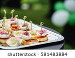 catering food | Shutterstock . vector #581483884