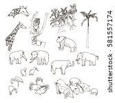 vector sketch zoological garden.... | Shutterstock .eps vector #581557174