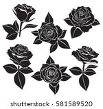 Stock vector vector set of rose buds stems and leaves with white contour line and silhouettes in black color 581589520