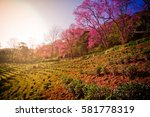 travel | Shutterstock . vector #581778319