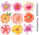 watercolor set of different... | Shutterstock . vector #581855314