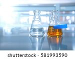 two flask with water and orange ... | Shutterstock . vector #581993590