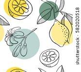 doodle hand drawn lemon... | Shutterstock .eps vector #582020518