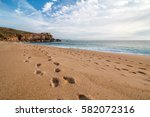 Footsteps On The Beach In...