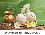 powder ayurveda pads with pot ... | Shutterstock . vector #582239218