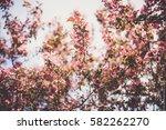natural texture | Shutterstock . vector #582262270