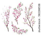 watercolor sakura branch.... | Shutterstock . vector #582288538
