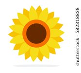 head of sunflower vector flat... | Shutterstock .eps vector #582318838
