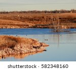 wide view of geese and the... | Shutterstock . vector #582348160