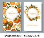 vector mandarin vertical... | Shutterstock .eps vector #582370276