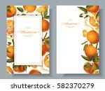 vector mandarin vertical... | Shutterstock .eps vector #582370279
