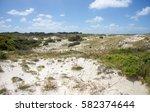 Coastal Sand Dunes With Native...