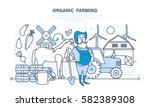 organic farming  cultivation of ... | Shutterstock .eps vector #582389308