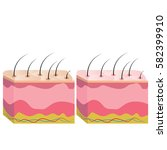 the structure of the skin  skin ... | Shutterstock .eps vector #582399910