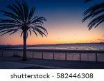 roses on catalonia  spain | Shutterstock . vector #582446308