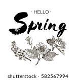 phrase hello spring brush... | Shutterstock .eps vector #582567994